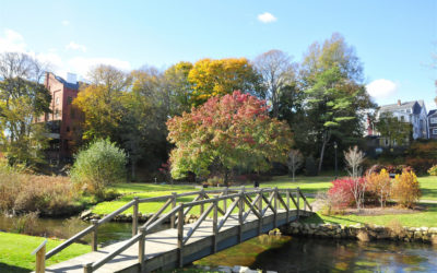 BREWSTER GARDENS IS SO GORGEOUS!